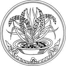 Ang-Thong-herb