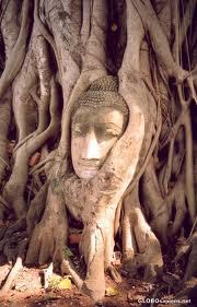 Prowincja Phra Nakhon Si Ayutthaya
